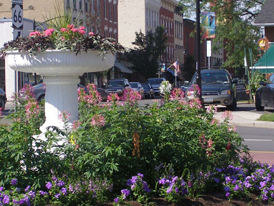 2011 photo gallery - Summer plantings on the circle during Chatham Summerfest 2011