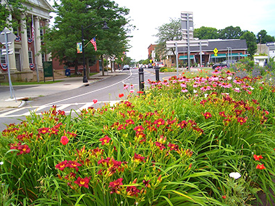 2013 Photo Gallery - Flowers on the circle in Chatham, NY
